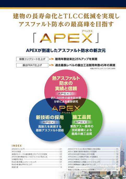 メンテ apex